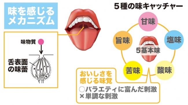 噛む効果 ひみこのはがいーぜ(み)~味覚の発達~