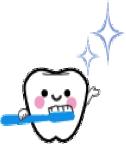 乳歯はどのように生えてくるの?