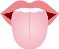 舌からわかる体のSOS!